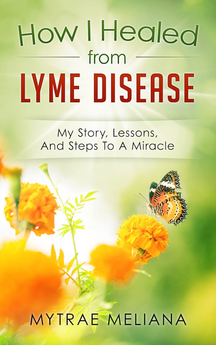 "Announcing my new book ""How I Healed From Lyme Disease"""