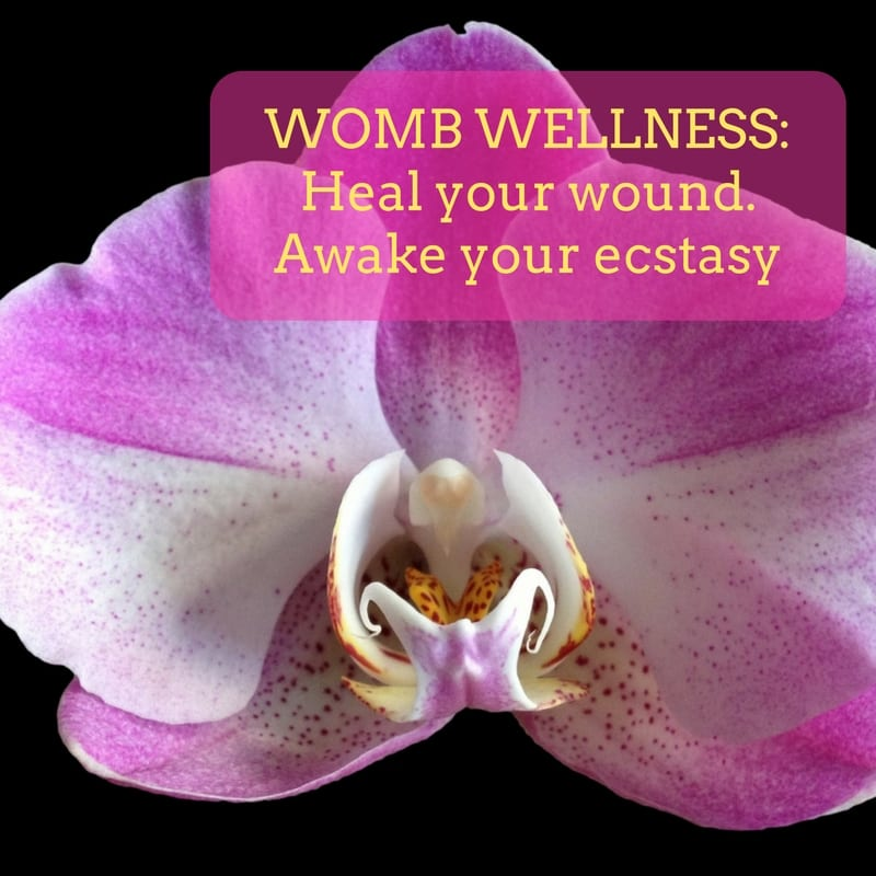 Womb Wellness: Heal Your Wound. Awake Your Ecstasy.