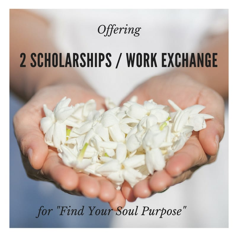 """Offering 2 Scholarships for """"Find Your Soul Purpose"""""""